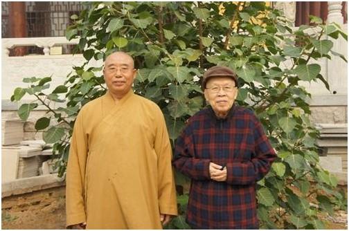 2012年10月仁炟法师与秦孟潇大德在博山正觉寺菩提树前合影